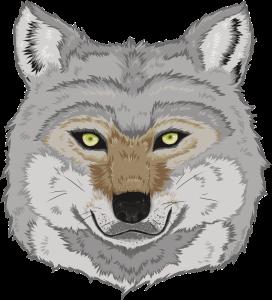 wolf-design