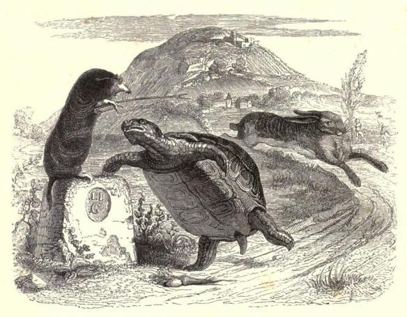 Grandville_tortoise & the hare.jpg