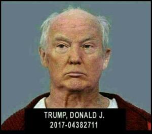 bald trump in jail