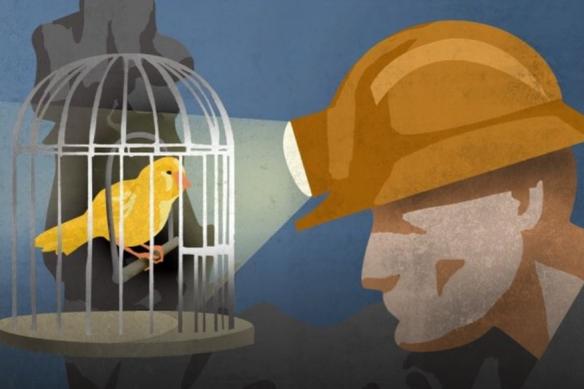 canary-coal-mine.jpg