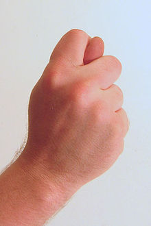 220px-gesture_fist_with_thumb_through_fingers