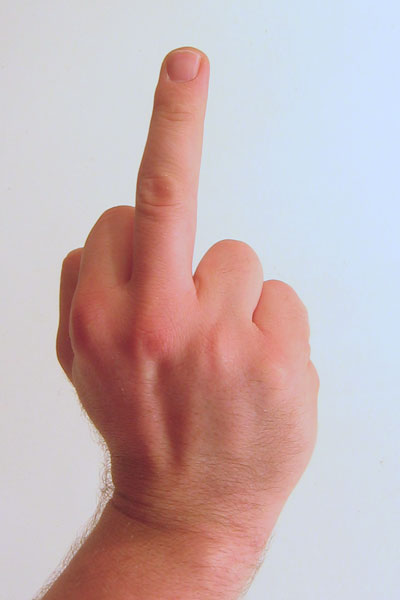 gesture_raised_fist_with_middle_finger_lifted