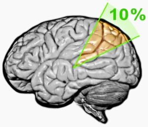 10_%_brain_myth_(2nd_version)